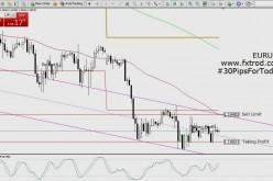 Trading Signals EURUSD | February 24, 2016