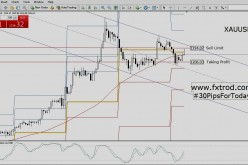 Trading Signals Gold | February 23, 2016